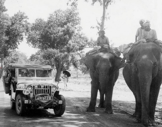 the_first_overland_elephant_pic