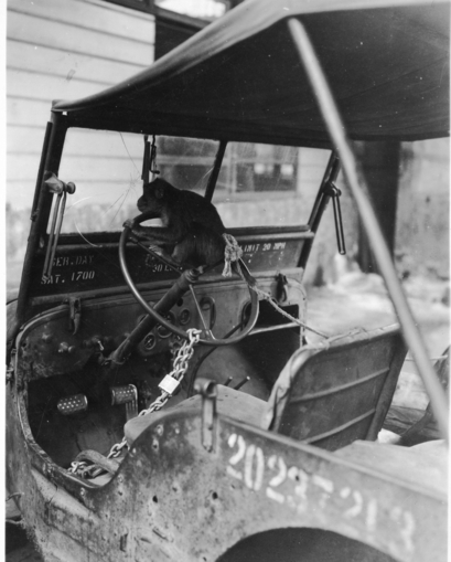 monkey-mascot-on-wheel-truman-archives