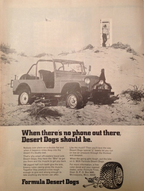 1974-02-four-wheeler-desertdog-ad