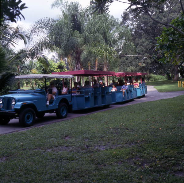 flamingo-gardens-jeep-tour-jeep