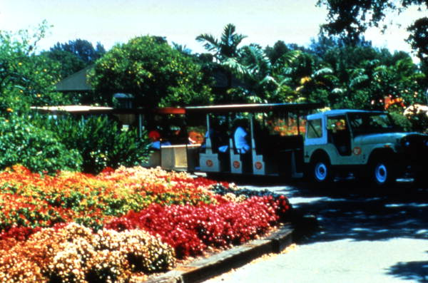 flamingo-gardens-jeep-tour-jeep2