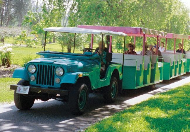 flamingo-gardens-jeep-tour-jeep3