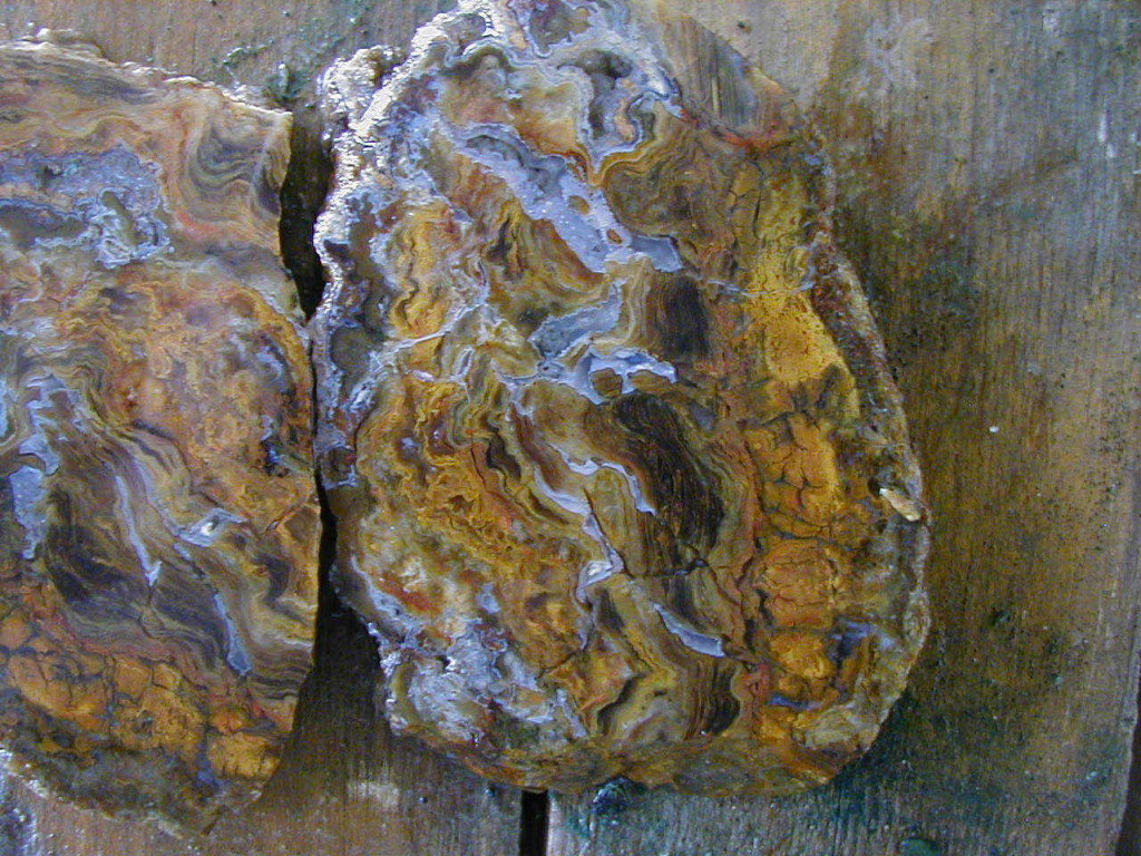 jumping-jeep-plume-agate