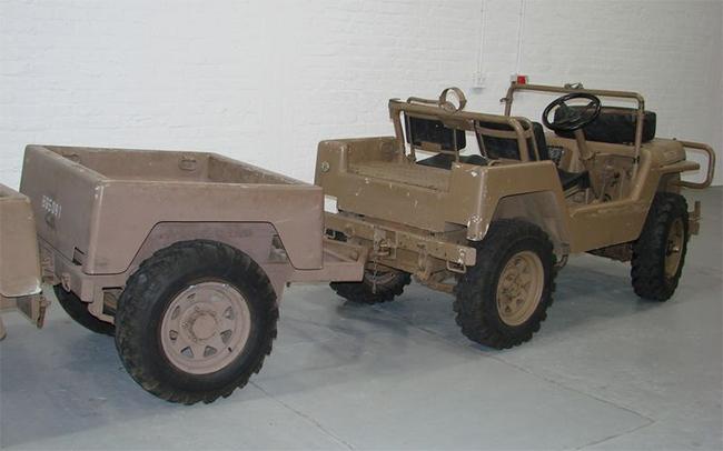 south-african-jakkal-6
