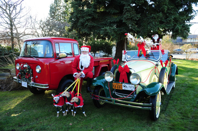 2013-xmas-lawrence-fc150-whippets-canada-lores