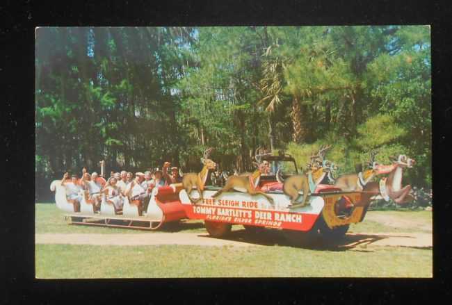 year-tommy-bartlett-deer-ranch-florida-postcard1