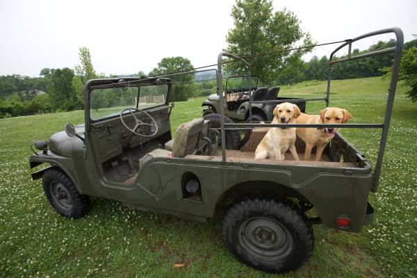 M 170 ewillys page 4 - Craigslist fayetteville farm and garden ...