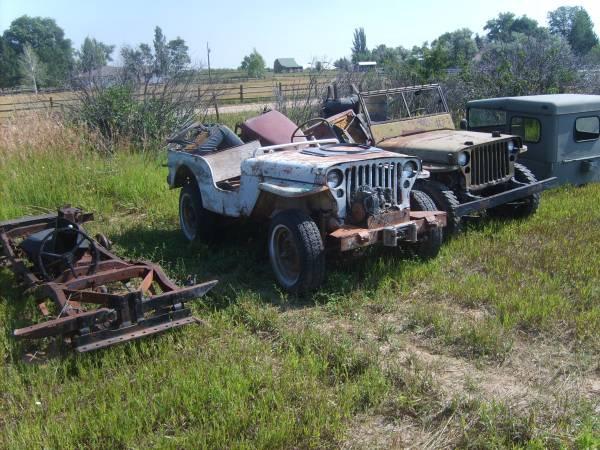 field-of-jeeps-colorado0