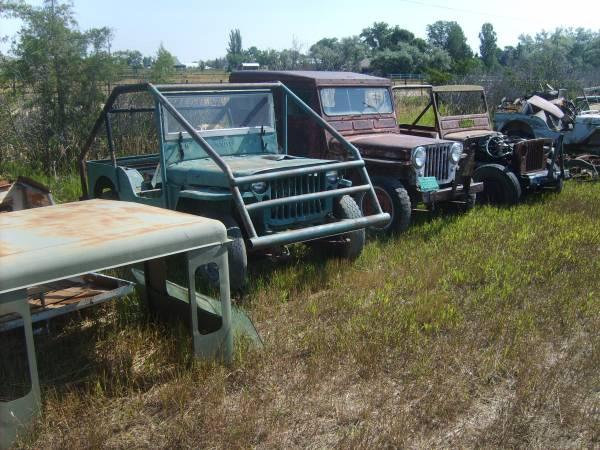 field-of-jeeps-colorado00