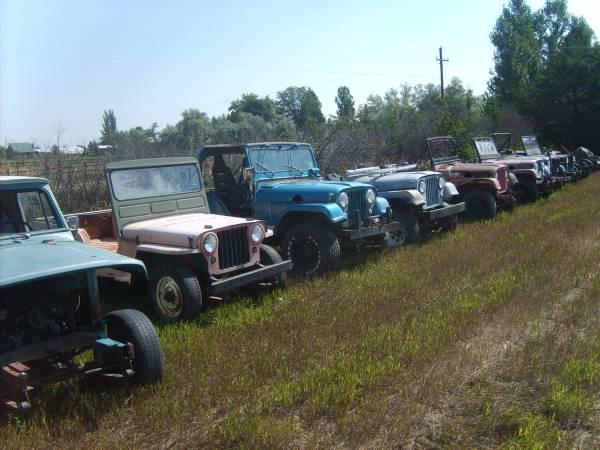 field-of-jeeps-colorado1
