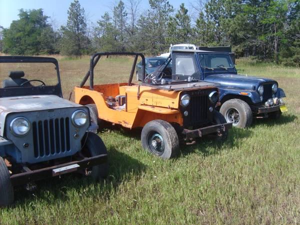 field-of-jeeps-colorado4