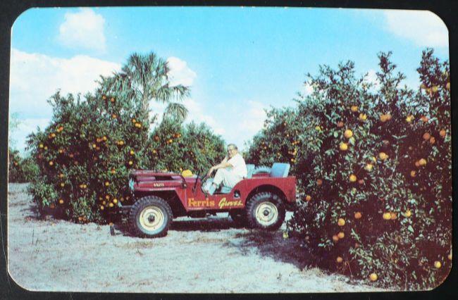 famous-ferris-groves-postcard1