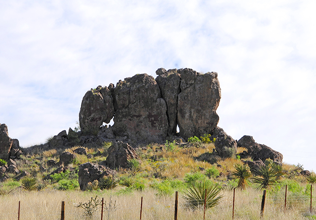 2015-04-26-elephant