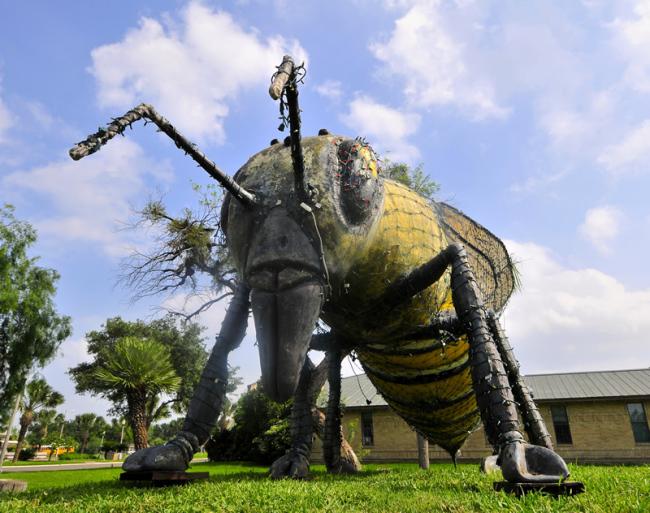 2015-05-07-killer-bee2