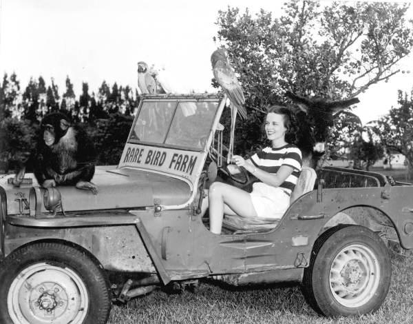 1948-frances-freeman-rare-bird-farm3