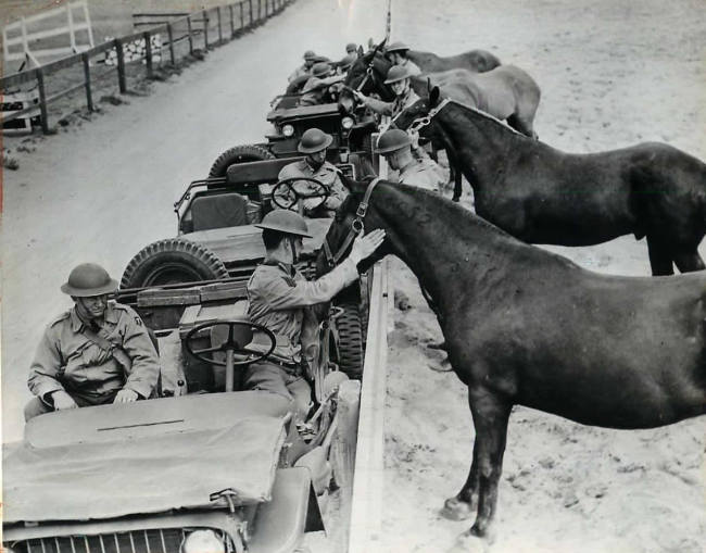 1942-05-04-troops-pet-horses-calvary1