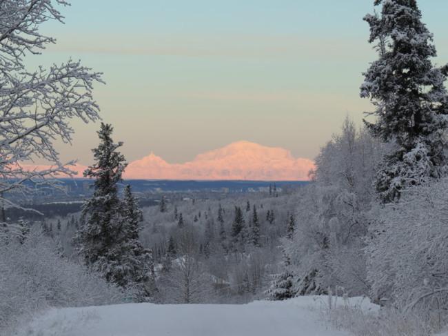 alaska-january-20162