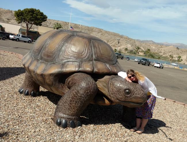 2016-03-13-bullheadcity-tortoise2