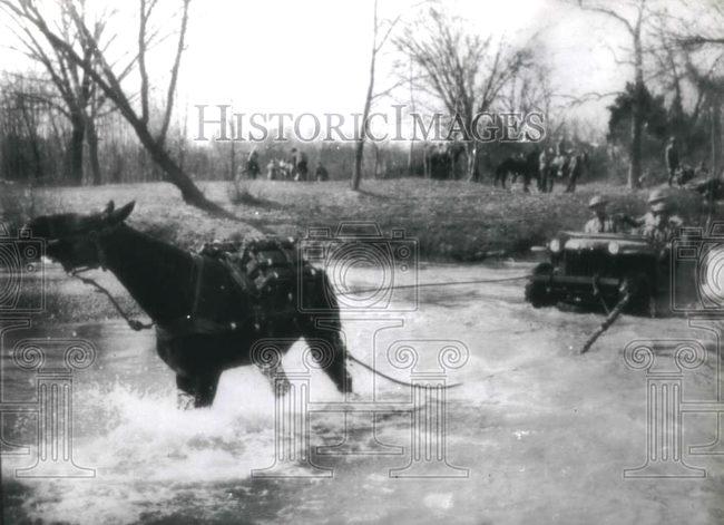1941-03-24-brc-60-horse-pulling-1
