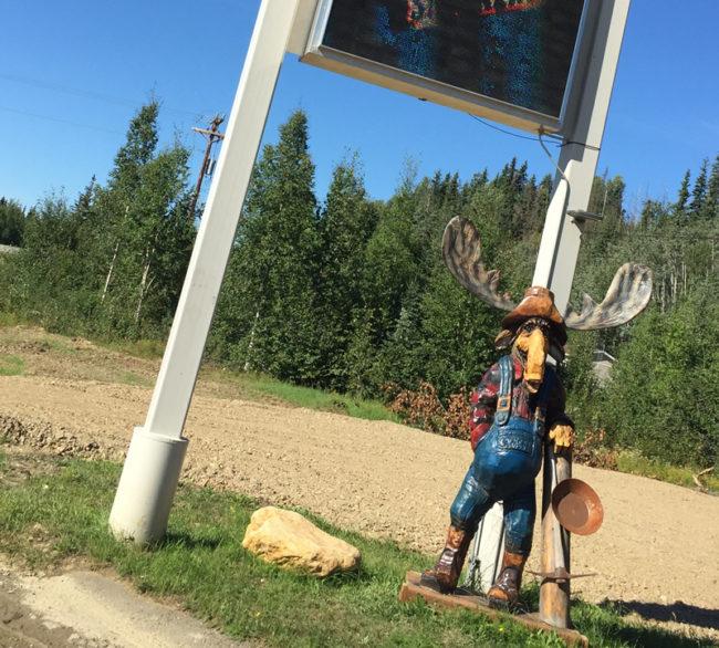 2017-08-05-moose