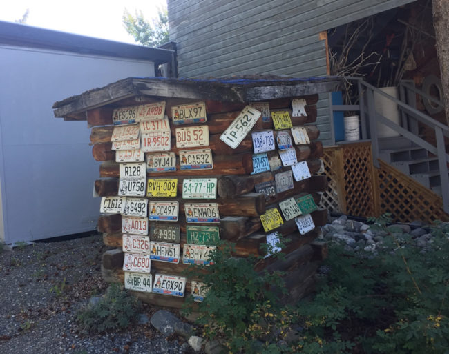 2017-08-09-douggie-bev-outhouse1