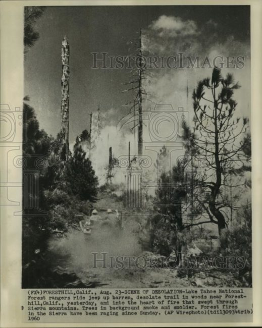 1960-08-25-jeep-tahoe-forest-fire1