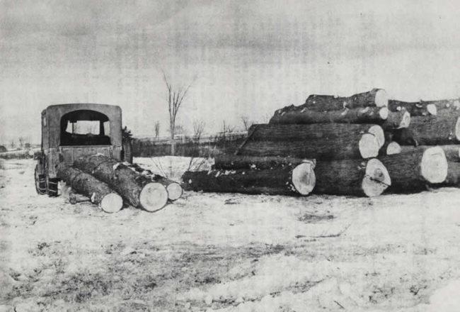 Scan10059-1947-01-20-stebbins-logging