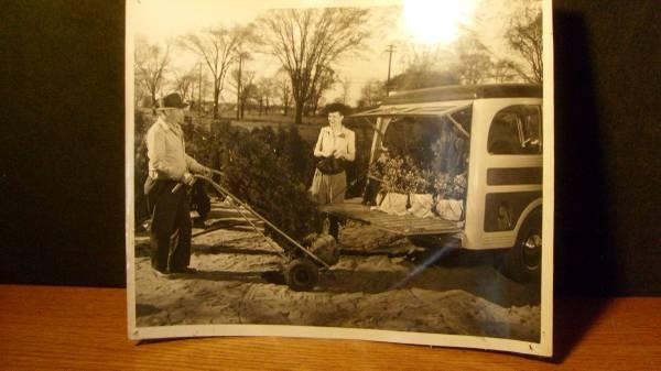 wagon-advertising-photos2