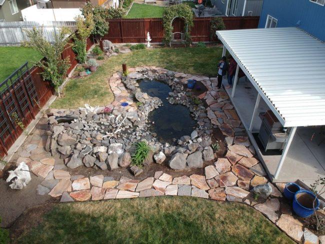 backyard-pics1