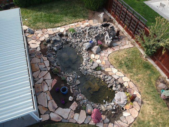 backyard-pics2
