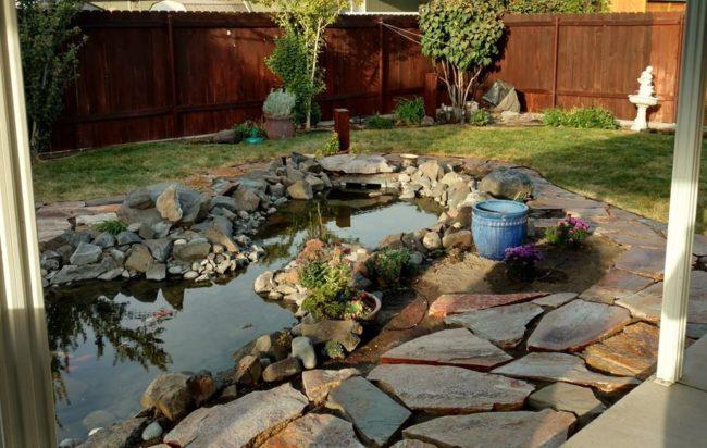 backyard-pics4