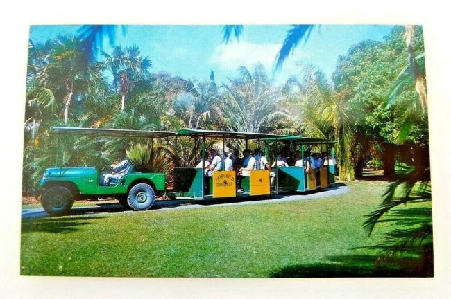 jeep-train-fairchild-gardens-postcard1