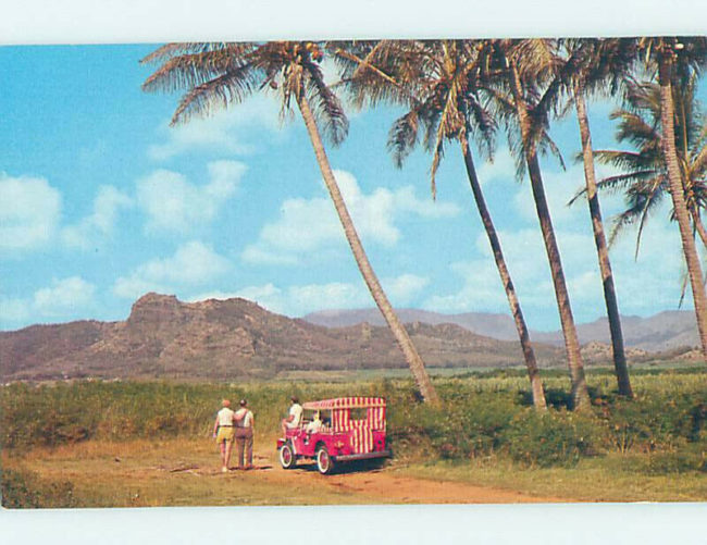 dj3a-hawaii-postcard1