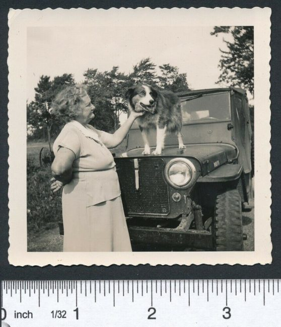 random-photo-woman-dog-2