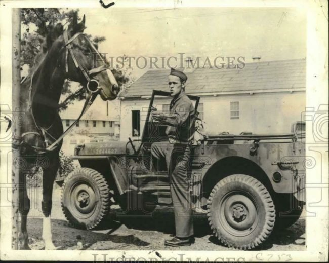 year-mb-horse-paul-revere-1