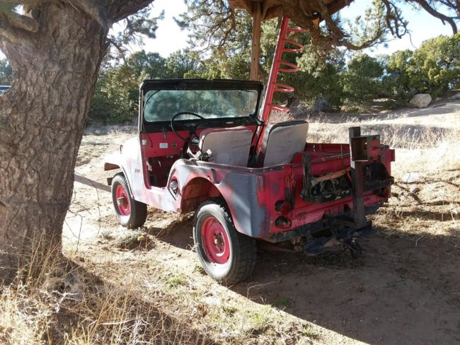 1955-cj5-greeley-co2