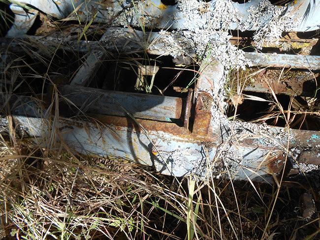 ratrod-jeep4-lores