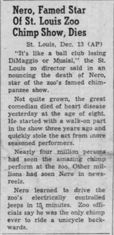 1950-12-13-southern-illinoisan-nero-chimp-dies