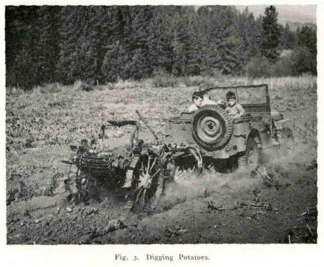 1942-05-27-digging-potatoes