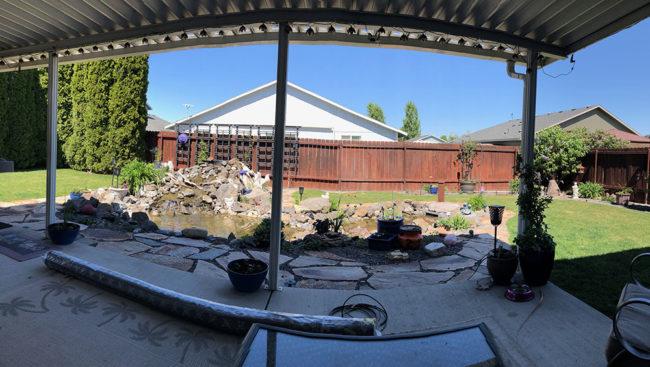 2020-04-20-backyard2